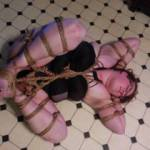 Tied and immobilized on the kitchen floor