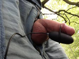 cock play in forest.