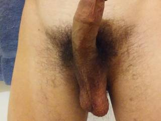 This is my dick.