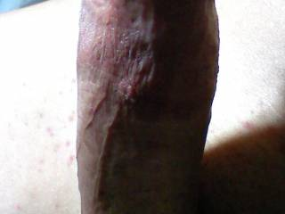 Wife wanted me to show a pic of my dick for the viewers