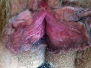 hairy & horny