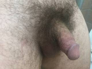6 Inch Hairy Cock Picture